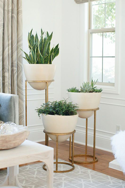 Indoor Plants Offer The Same Lush Luxury As Outdoor Flora But Can Be D In Chic Modern Containers Check Out These Unique Plant That