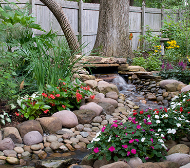5 Fabulous Featured Gardens