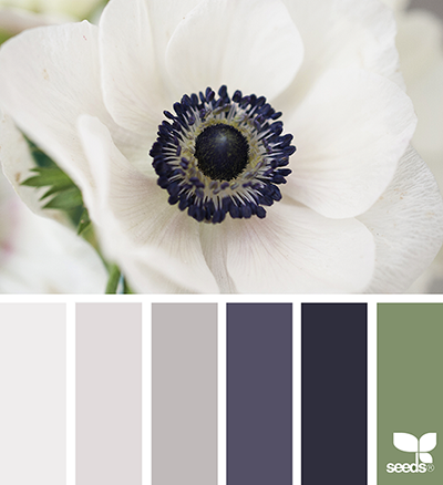 Friday Favorites: Chic Color Palettes