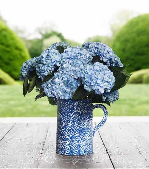 6 Chic Modern Vases