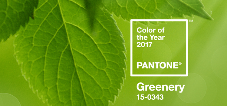 2017 Pantone Color of the Year in Review