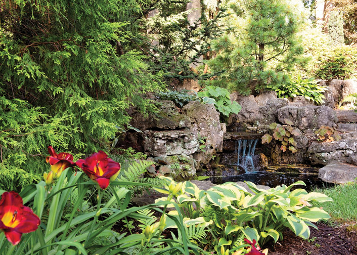Bring Life to Your Backyard